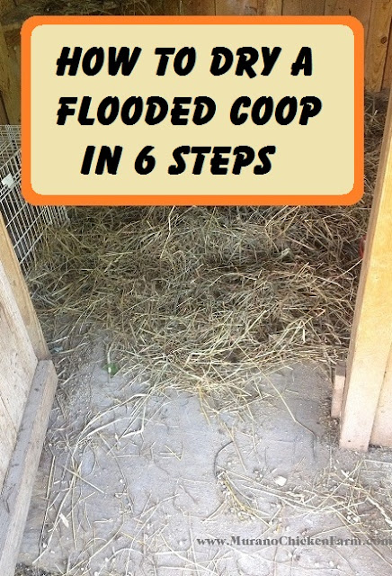 dry a wet coop