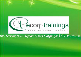 IBM Sterling B2B Integrator Data Mapping and EDI Processing