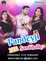 Pandeyji Zara Sambhalke (2021) Season 1  Watch Online Movies   Free Download Movies In HD Print