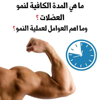 المدة الكافية لنمو العضلات و طرق تسريع نموها