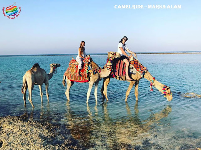 Ride Camel on Beach - Marsa Alam