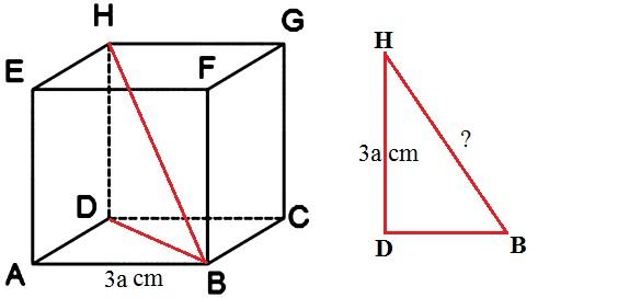 Contoh Soal Dimensi Tiga dan Pembahasannya Contoh Soal Dimensi Tiga dan Pembahasannya