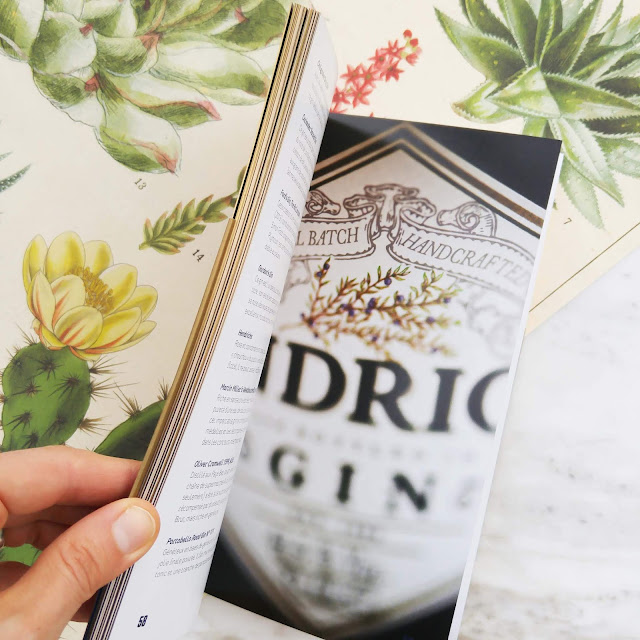 du-gin,livre,suggestion,cadeaux,anne-laure-pham,blog,madame-gin