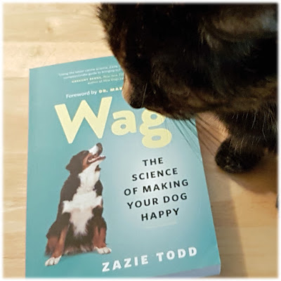 Zazie Todd's tortoiseshell cat Melina with a copy of Wag