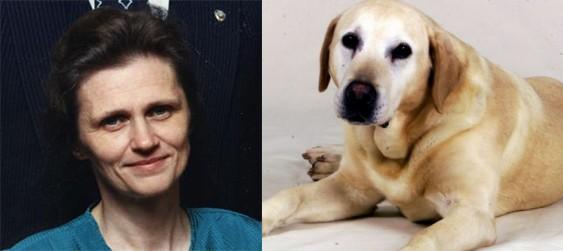 Здорового пса усыпили чтобы похоронить рядом с хозяйкой