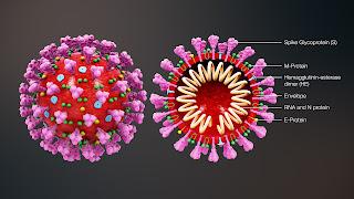 Coronavirus Live Update India