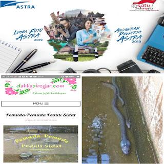 Anugerah Pewarta Astra 2019