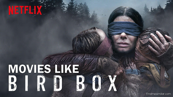 Movies Like Bird Box, Bird Box hd poster