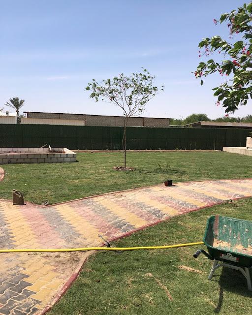 تركيب شبكات الري في عجمان تمديد شبكات الري للمزارع في عجمان