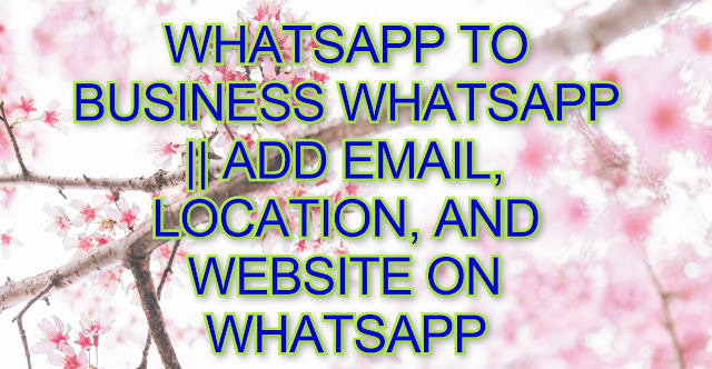 Whatsapp To Business Whatsapp || Add Email, Location, And Website On Whatsapp