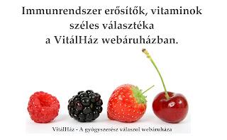 VitálHáz webáruház