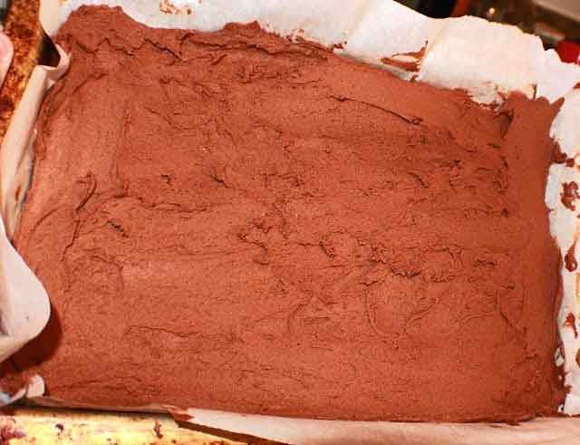 this is a German chocolate brownie raw batter