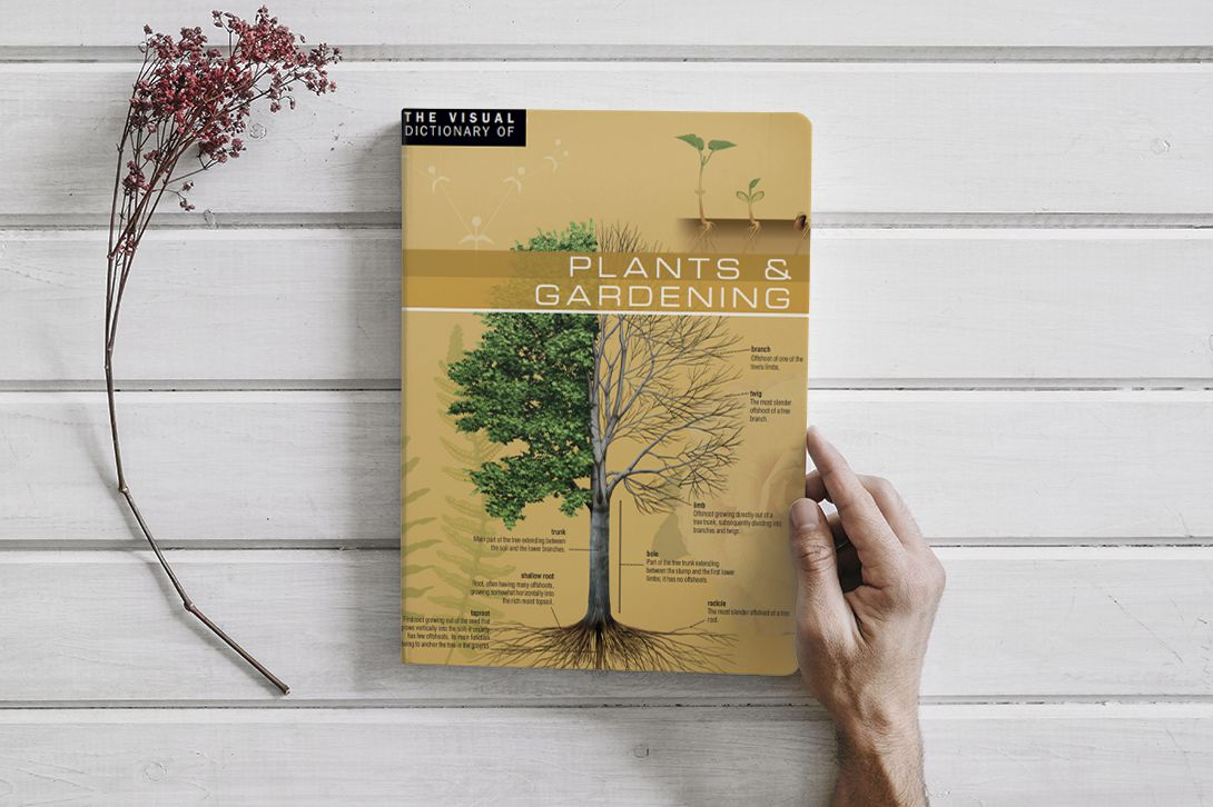 The Visual Dictionary of Plants & Gardening by Ariane Archambault (PDF)