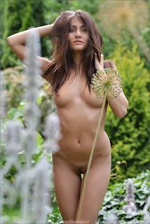 热辣的女士们 - sexy michaela isizzu - wild bush 2