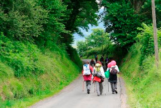 4. Camino de Santiago