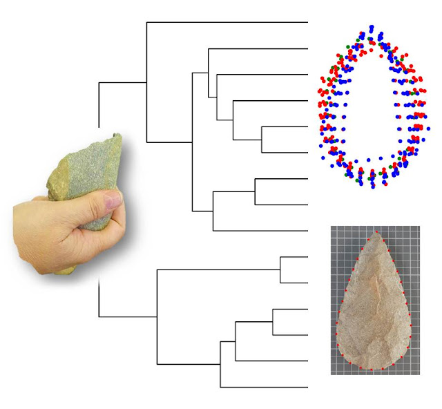 New study on cognitive archaeology and tactile responses to the lithic industry
