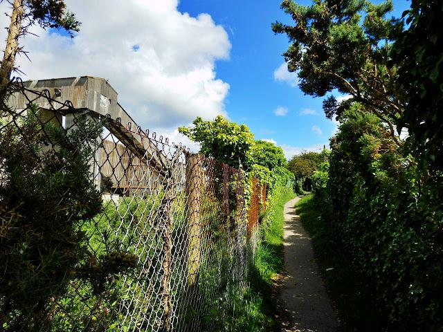 Path to Spit beach, Cornwall
