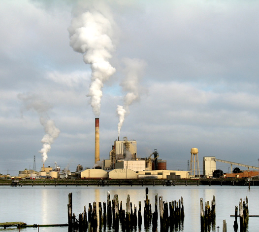 Pulp Mill, Samoa, California