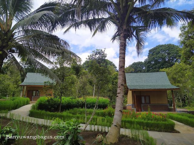 villa di perkebunan Kalibendo.