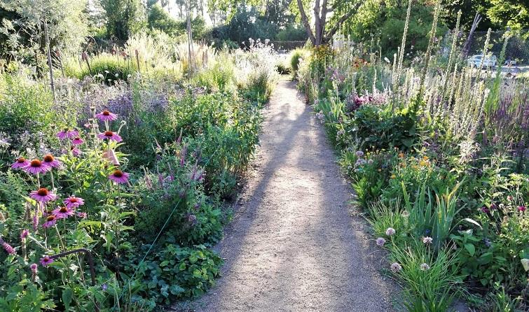 Pia Hillerichs Garten