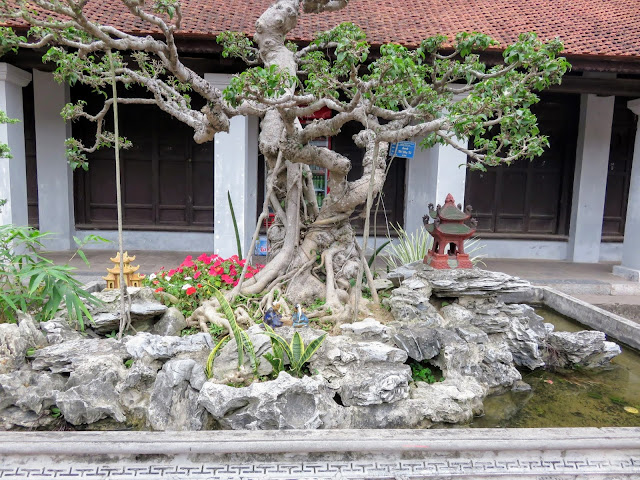Bonzai tree and diorama at the Temple of Literature in Hanoi, Vietnam