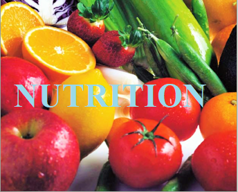 Your quick reference to the basics of nutrition