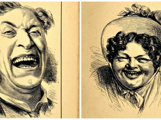 On the Possession of a Sense of Humor