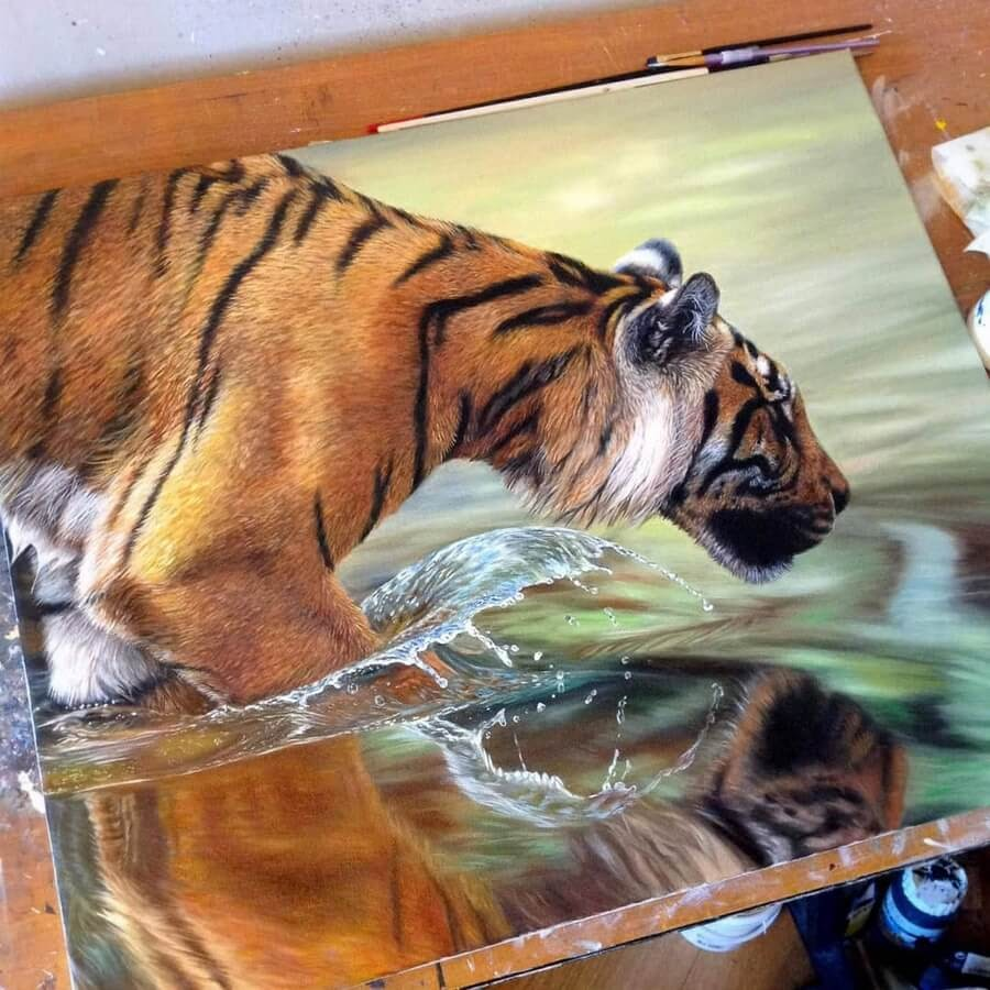 01-Tiger-reflection-Amber-Tyldesley-www-designstack-co