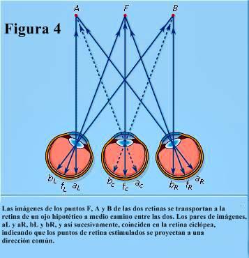Figura 4: El sistema ciclópico de proyección