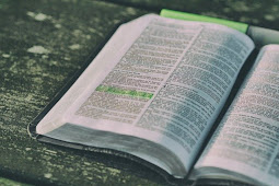10 Bible Verses about False Teachings