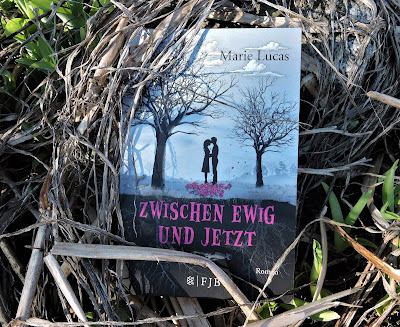Buchrezension: ZWISCHEN EWIG UND JETZT von Marie Lucas