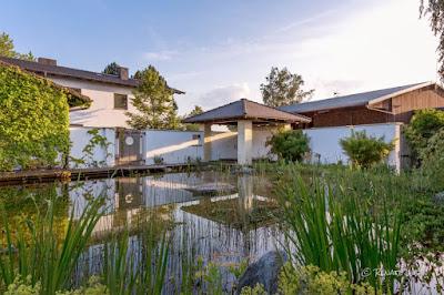 Ein Teich zum Baden ist im Sommer perfekt - aber auch den Rest des Jahres sehr attraktiv