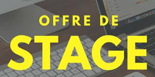 Offre_de_stage_professionnel_rémunéré_au_Black_and_White_Media