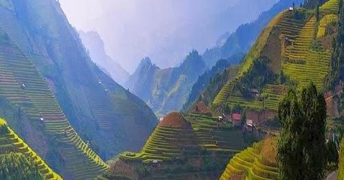 6006px Fun Place Rice Terrace M 249 Cang Chải District Vietnam