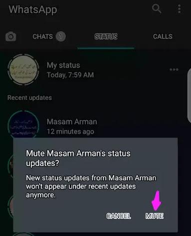mute someone on whatsapp status