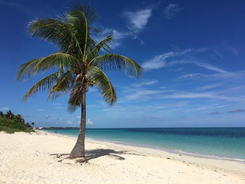 cosa vedere a grand bahama