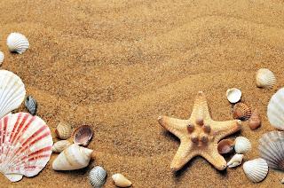 Inilah Alasan Kenapa Anda Harus Libur Ke Pantai - PesisirBarat.Com