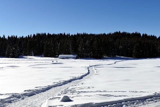 alpe cimbra folgaria inverno