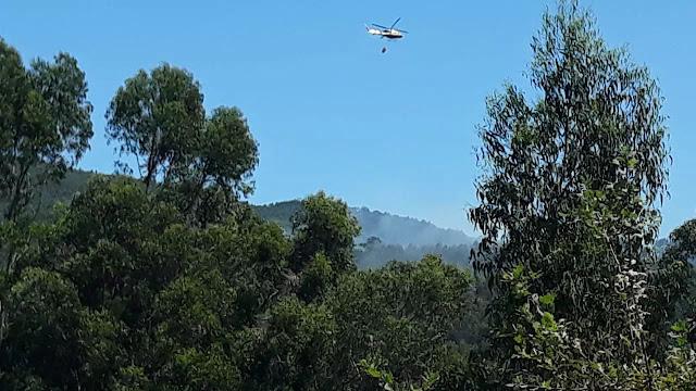 Un incendio forestal en A Portela, en Barro, moviliza a numerosos medios