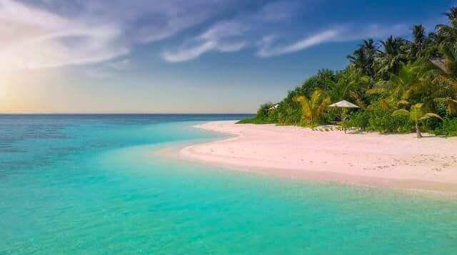 Pink sand beach: