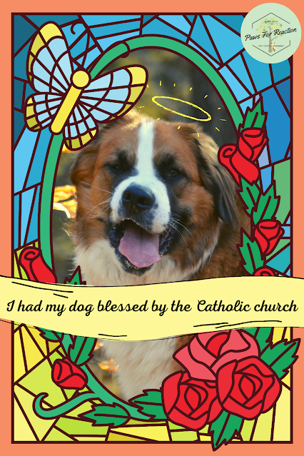 I had my dog blessed by the Catholic church
