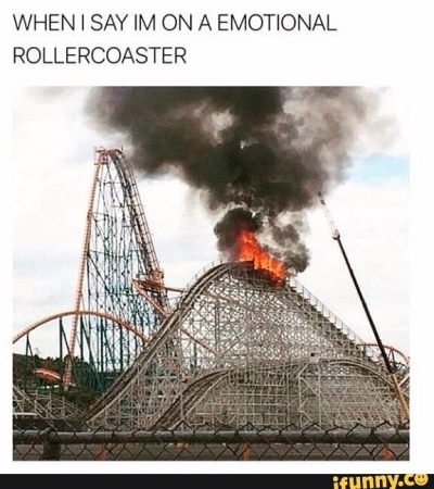 emotional roller coaster funny meme