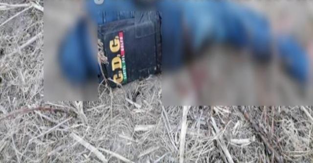 """""""Aun estaban empecherados"""", Así encontraron los cuerpos de 6 Sicarios del Cártel del Golfo que recibieron el tiro de gracia en Reynosa; Tamaulipas"""
