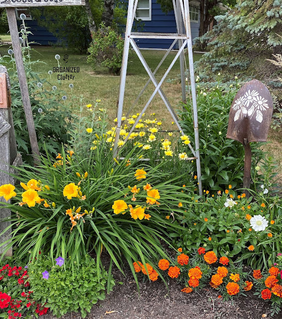 Photo of front yard flower border.