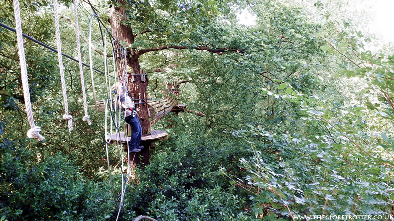 Tree Crossings at Go Ape Cockfosters
