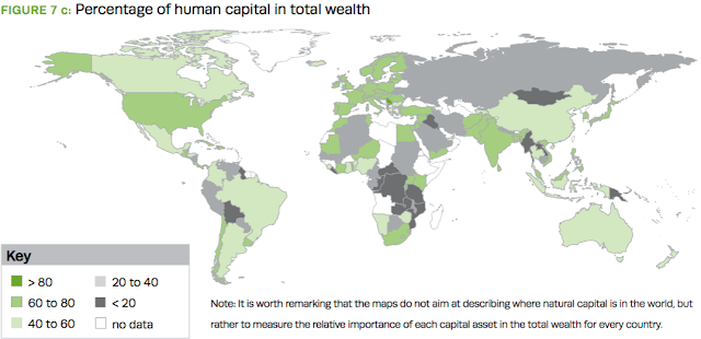 human capital in total wealth