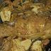 Ikan Mas Arsik, Makanan Khas Suku Batak Toba