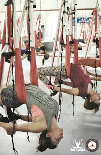 mexico, formacion, maestros, yoga, profesorado, profesores, aero yoga, air yoga, yoga alliance, cursos, yoga aereo, suspension, DF, distrito federal, salud, ejercicio, seminarios, talleres