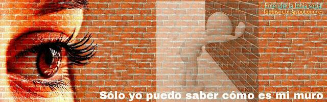Imagen de mirada que observa muros que no puede saltar,  en fobia social