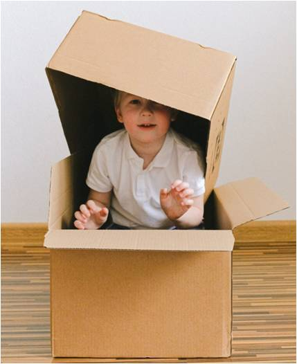 : A boy playing in a box
